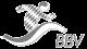 logo_BBV_SW